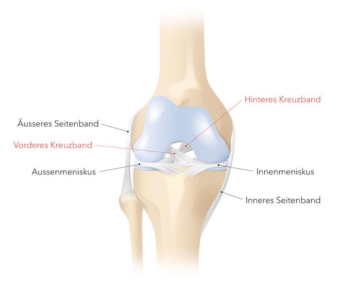 Weg nach knie knickt hinten Linkes Bein